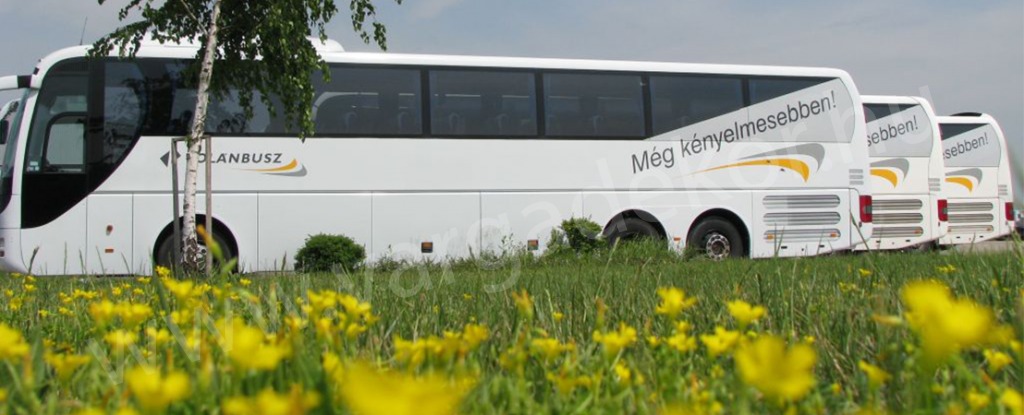 buszdekoracio-varga-dekorved-1024x415